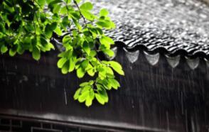 江淮地区有一怪,梅子黄时它就来,来了赖着不肯走,几乎年年造成害(打一自然现象)谜底及原因