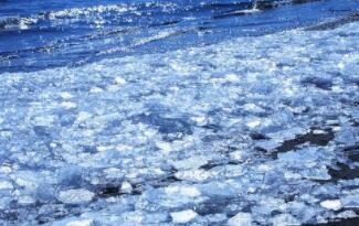 生在水中,却怕水冲,放到水中,无影无踪(打一物)谜底及原因
