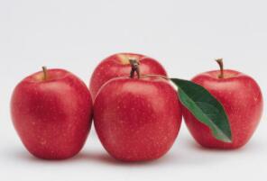 皮儿有红也有黄,身子圆圆好模样,连皮带肉一起啃,味儿甜甜有营养(打一水果)谜底及原因