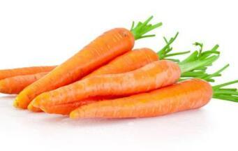 红脸戴绿帽,营养价值高。土里发现它,还需用力拔(打一蔬菜)谜底及原因