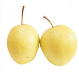 黄包袱,包黑豆,尝一口,甜水流(打一水果)谜底及原因